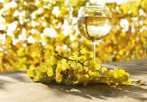 white-wine-glass-600x418